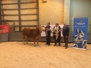 CHAMPION HEIFER WITH CHRISTINA AND CHARLES COPLAND AND STUART GARRETT FROM SPONSORS NORTHLINK FERRIES